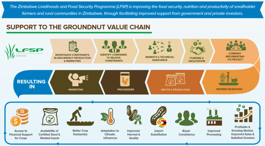 Infographic: Markets Development support to the groundnuts valuechain