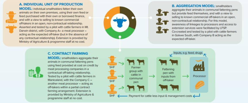 INFOGRAPHIC: Cattle Pen Fattening