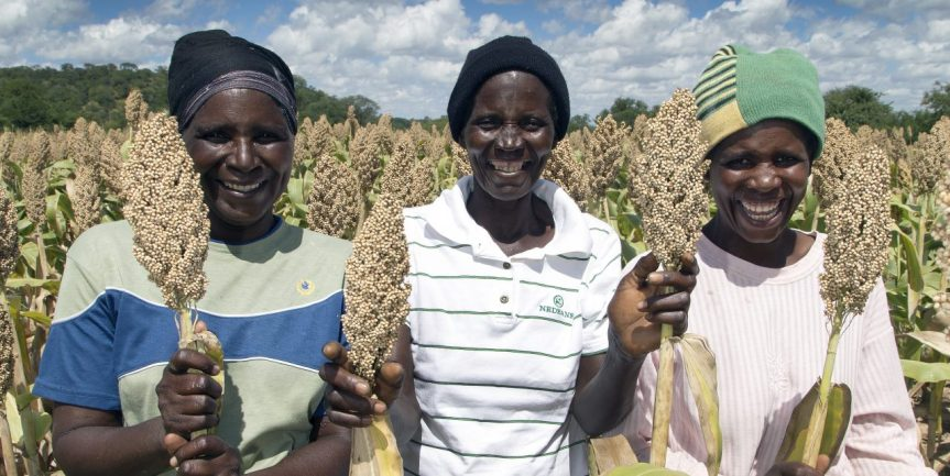 FACT SHEET: Transforming gender social norms in rural smallholder farmers in the LFSP targetdistricts