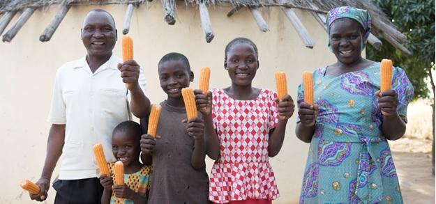 FACT SHEET: Nutrition Sensitive Agriculture Programming inZimbabwe