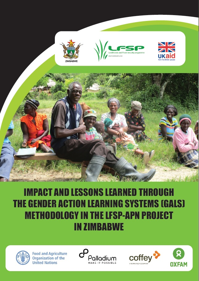 Impact and lessons learned through the Gender Action Learning Systems (GALS)