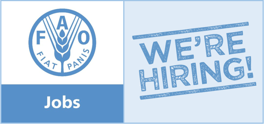 Job Opportunity at FAO: Evaluation Specialists (Evaluation Team Leader and teammembers)